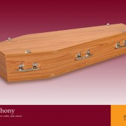 St Anthony Coffin