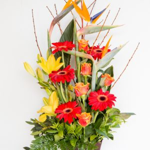 Modern Arrangement Bird of Paradise + Lily + Gerbera + Roses