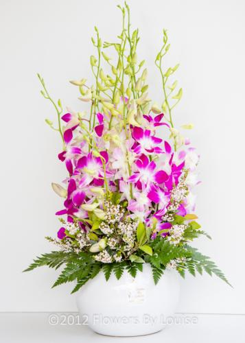Fish Bowl Pot of Orchids Mauve & White Orchids